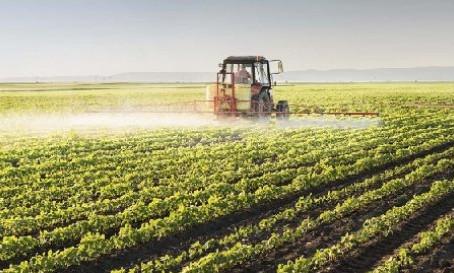 Gobierno apuesta a la agroindustria