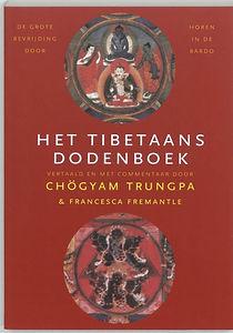 het-tibetaans-dodenboek-deyja-platform-d