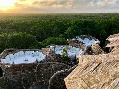 Intertwining nature: Azulik Tulum