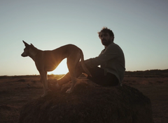 Video & meditatie: omgaan met de uitdagingen van het leven