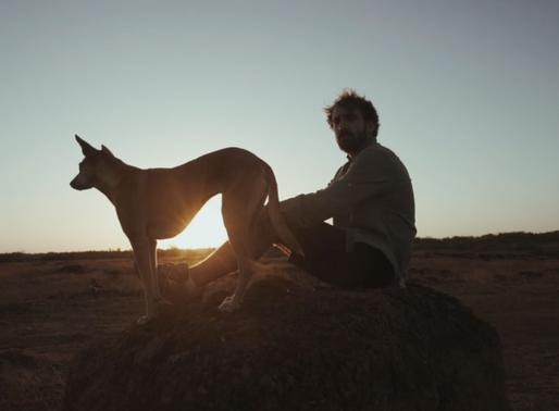 Video-Meditatie: Het geheim van omgaan met het leven haar grote uitdagingen en veranderingen