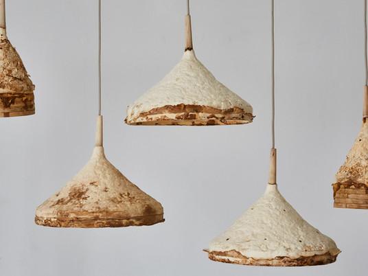 Biofacture: Mycelium + timber