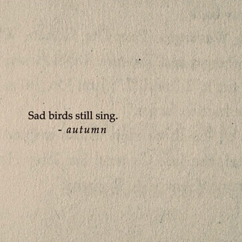 Sad birds still sing