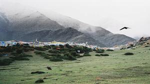 De dood. Hoe doen ze het in Tibet?
