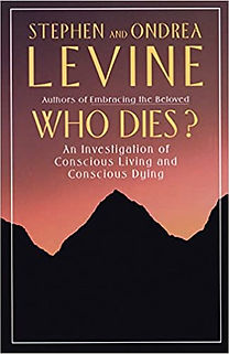 Stephen-Levine_Who-dies-An-investigation