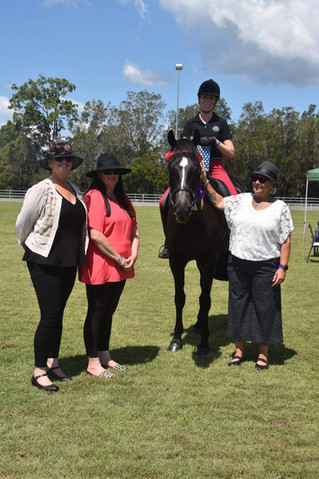 Equestrian NSW Hack Show coming to Taree  Can you Help?