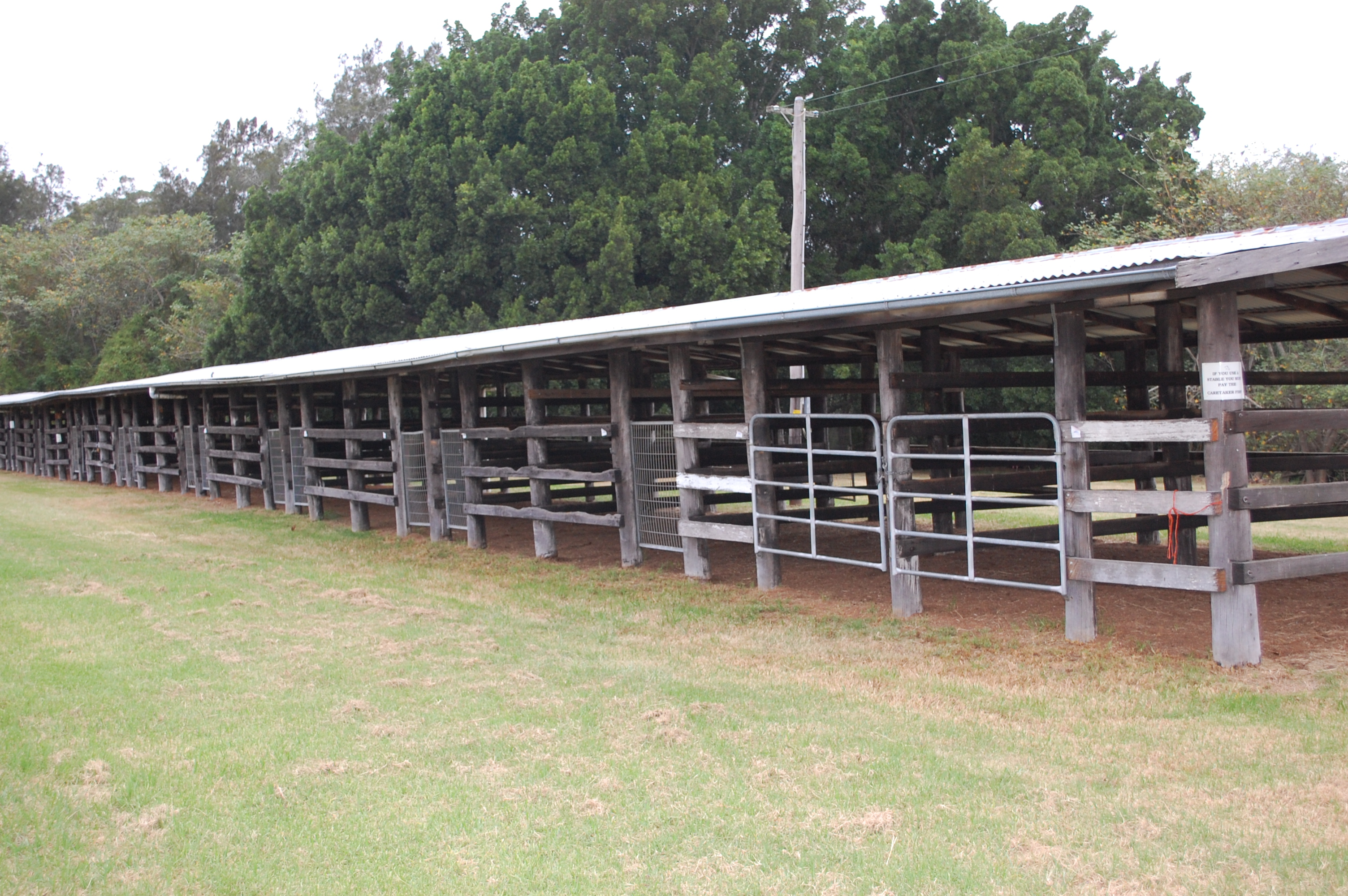 More Stables
