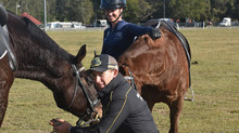 Equine Behavioural Therapy - Can you help?
