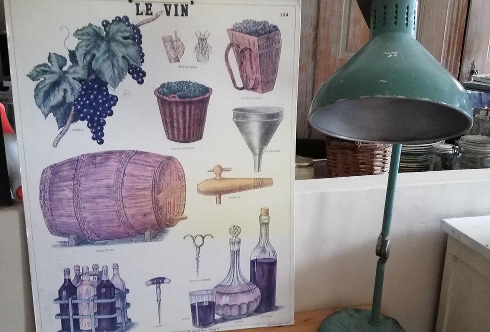 Affiche cartonnée Deyrolle sur le vin...