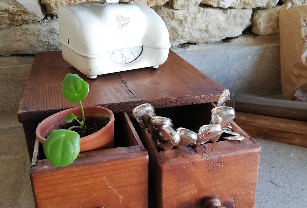Ancien petit meuble de cireur