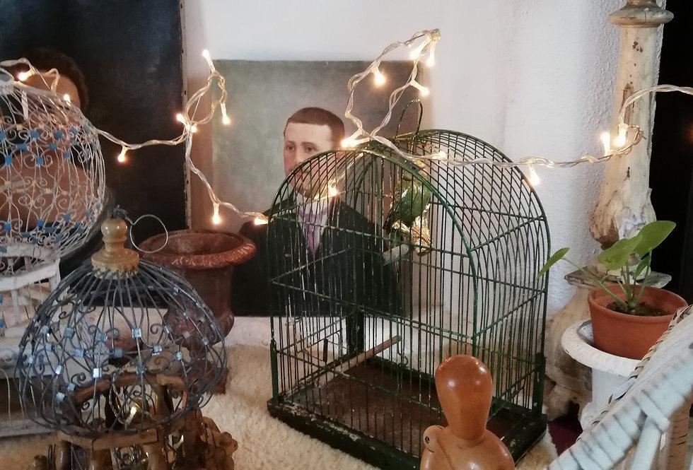 Cage verte en métal