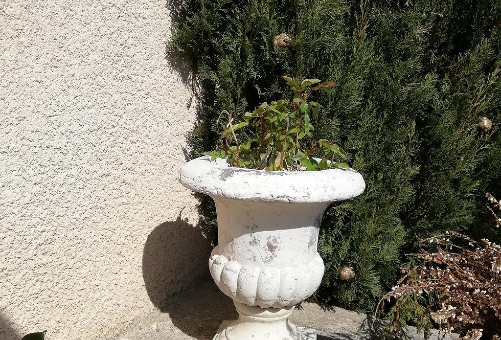 Vase Medicis en terre cuite
