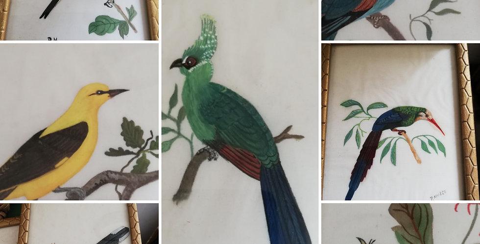 Sept petites peintures dans cadre bois oiseaux signés du peintre...Seven litt