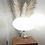 pair crystal lamp