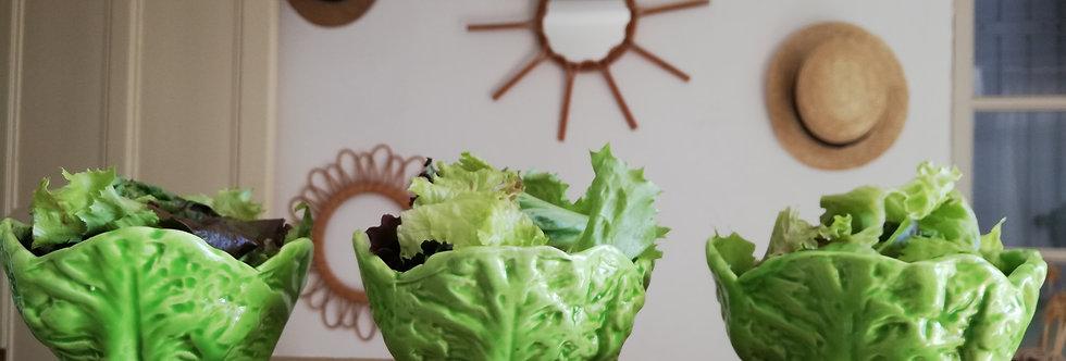 6 bols à salade en Barbotine