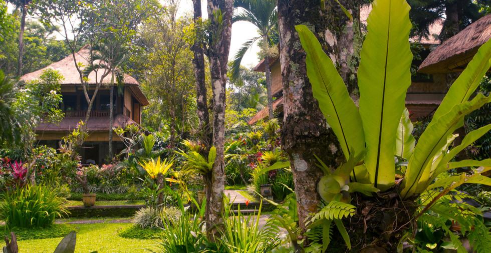 Hotel_indonésien.jpg