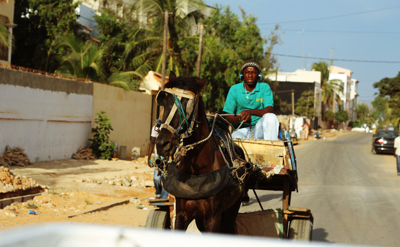 Course_à_cheval.jpg