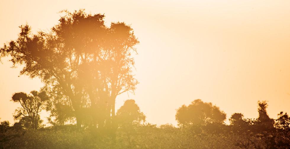 Kenya_22.jpg