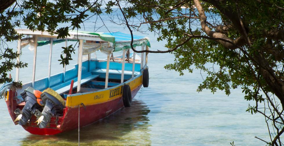 Un bateau sous l'arbre.jpg