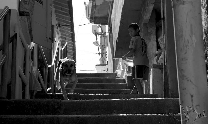 Favela chien contre attaque.jpg