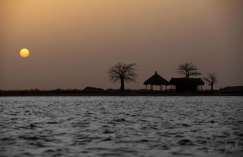 Maison mangrove.jpg