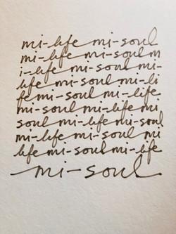Mi-Life, Mi-Soul Campaign