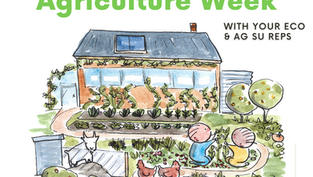 Food Justice and Irish Agriculture Week