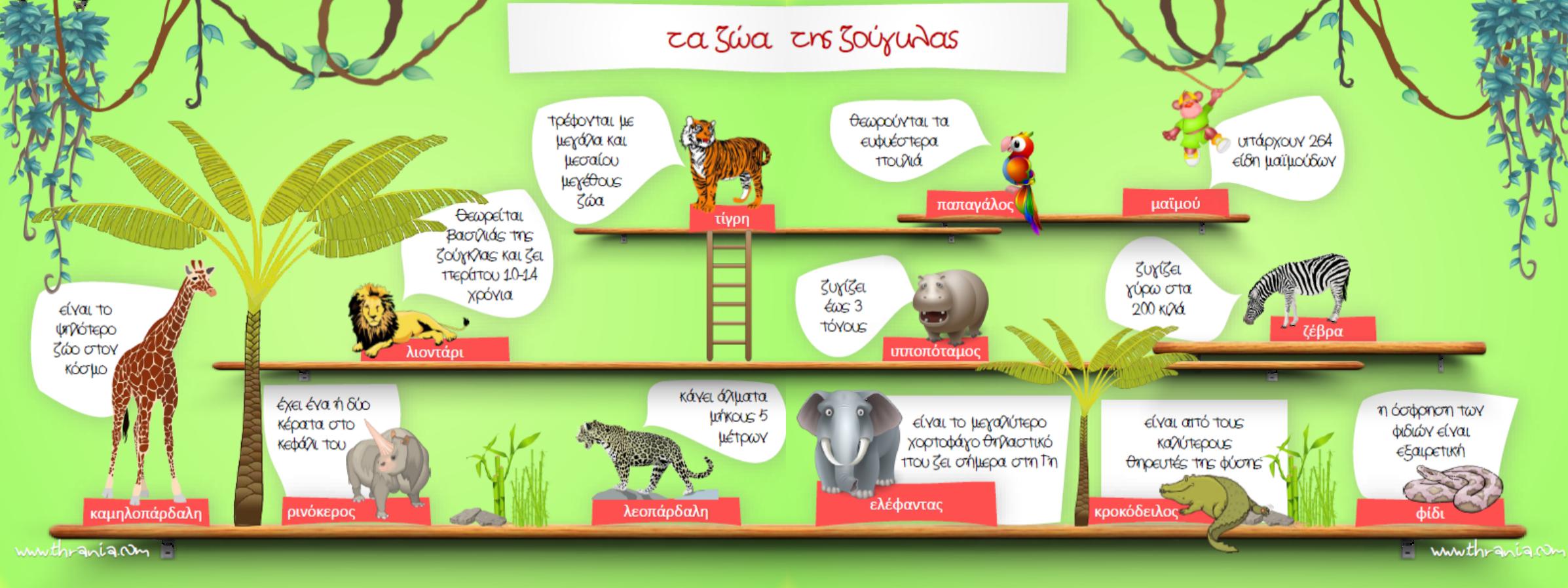 Μαθαίνω τα ζώα της ζούγκλας