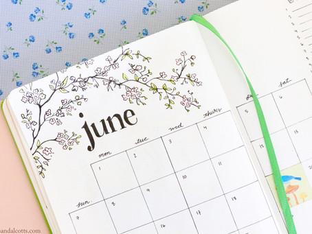 June 2020 Bullet Journal Setup