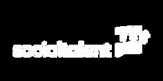 SocialTalent logo.png