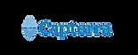 Capterra logo.png