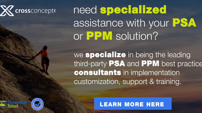 Specialized PSA & PPM Consultancy Services