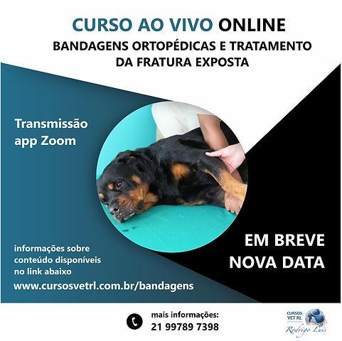 capa_site_nova data_bandagens.jpg