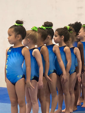 girs team gymnastics houston