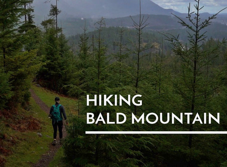 Hiking Bald Mountain or Noodles Shouldn't Be the Only Thing in Your Pack