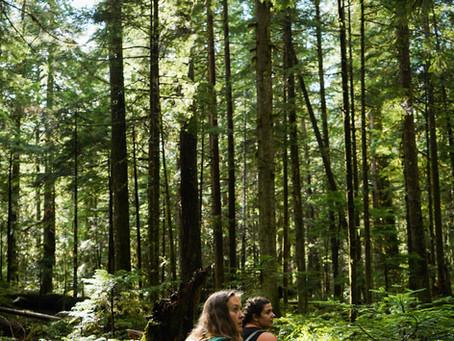 Upper Myra Falls - Vancouver Island Hike