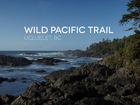 The Wild Pacific Trail