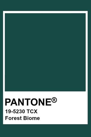 Nuestro Wedding Report del Color Pantone Otoño/Invierno 2019
