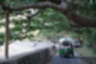 加計呂麻島をトゥクトゥクで観光|奄美大島南部 瀬戸内町古仁屋の一棟一組限定の宿 ゆうなぎ