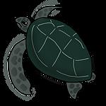アオウミガメ.png
