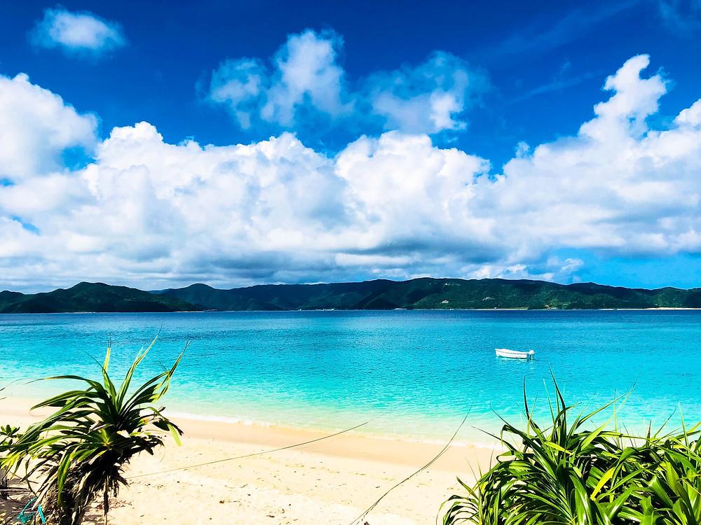 犠牲にしていた自分を取り戻し、自然や地域とつながる。それがこれからの気持ちいい働き方かもしれない。奄美大島の「フリーランスが最も働きやすい島化計画」を取材してきました!