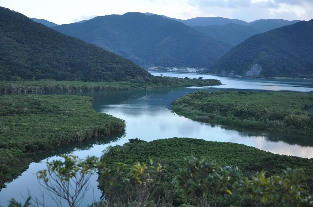 奄美大島の中でも豊かな自然の宝庫「奄美市住用町」