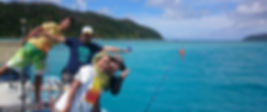 奄美大島 釣り体験・シュノーケリング・体験ダイビングステーション『サラサ』