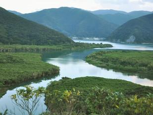 今、奄美大島がアツイ!!五感でシマ体験をしながら宿泊できるオススメ民泊施設!