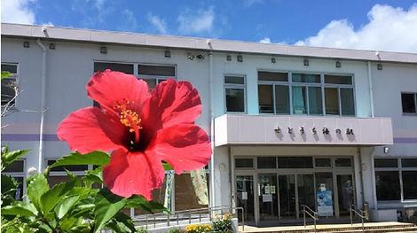 奄美せとうち観光協会 | 奄美大島瀬戸内町の観光情報サイト