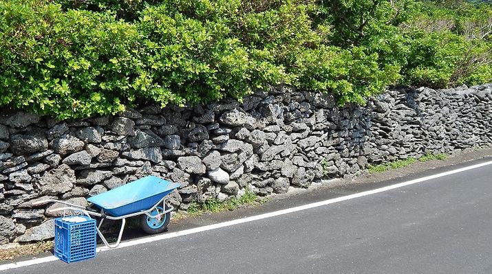 西古見 サンゴの石垣