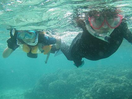 シュノーケリング | 奄美大島 釣り体験・シュノーケリング・体験ダイビングステーション『サラサ』