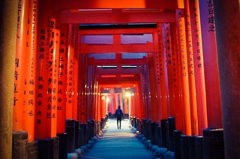 tour guide | Fushimi-inari Taisya