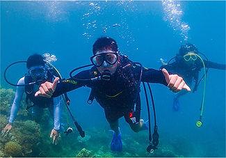 加計呂麻島体験ダイビング
