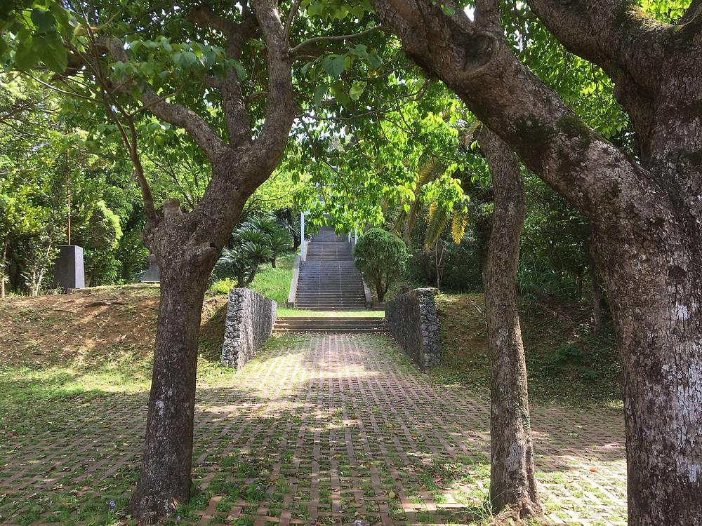 名瀬市街地を一望できる自然公園『おがみ山公園』